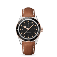 Omega Master Co-Axial 41 mm - 最小管理単位 233.22.41.21.01.002