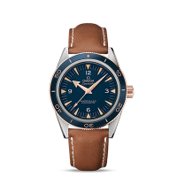 Omega Master Co-Axial 41 mm - 最小管理単位 233.62.41.21.03.001
