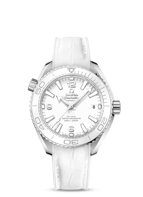 Planet Ocean 600M Omega Co-Axial Master Chronometer 39.5 mm - 215.33.40.20.04.001