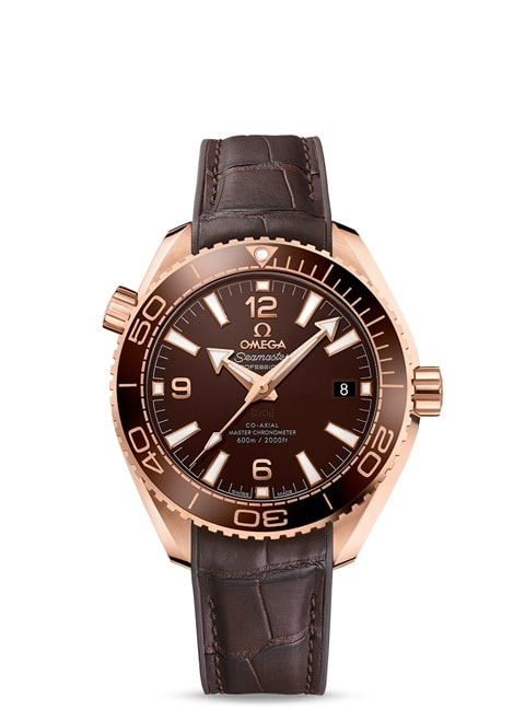 Planet Ocean 600M Omega Co-Axial Master Chronometer 39.5 mm - 215.63.40.20.13.001