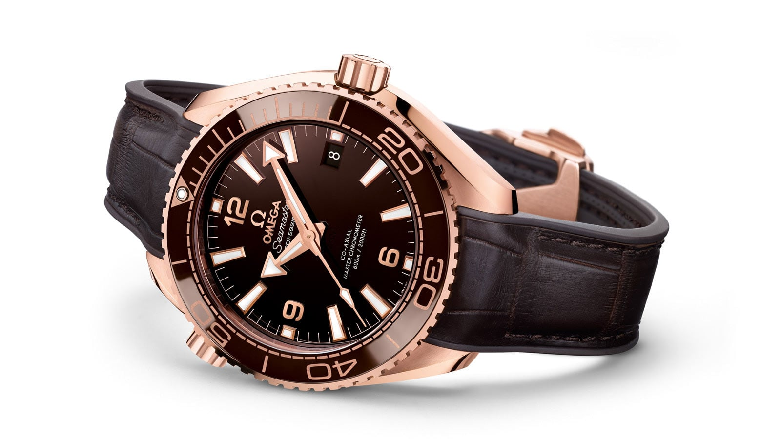 THE SEAMASTER PLANET OCEAN LADIES' SELECTION